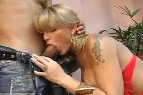 stunning plump pooper playgirl pounded In The bathroom